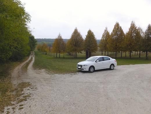 35レンタカー1s.jpg